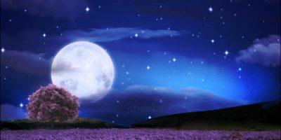Celebrate Moon Festival in Taiwan – Part 2